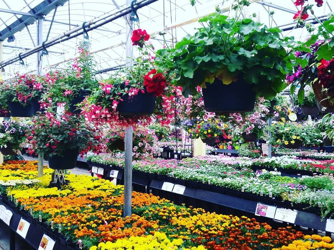 Plant Garden Centers In Lancaster Pa