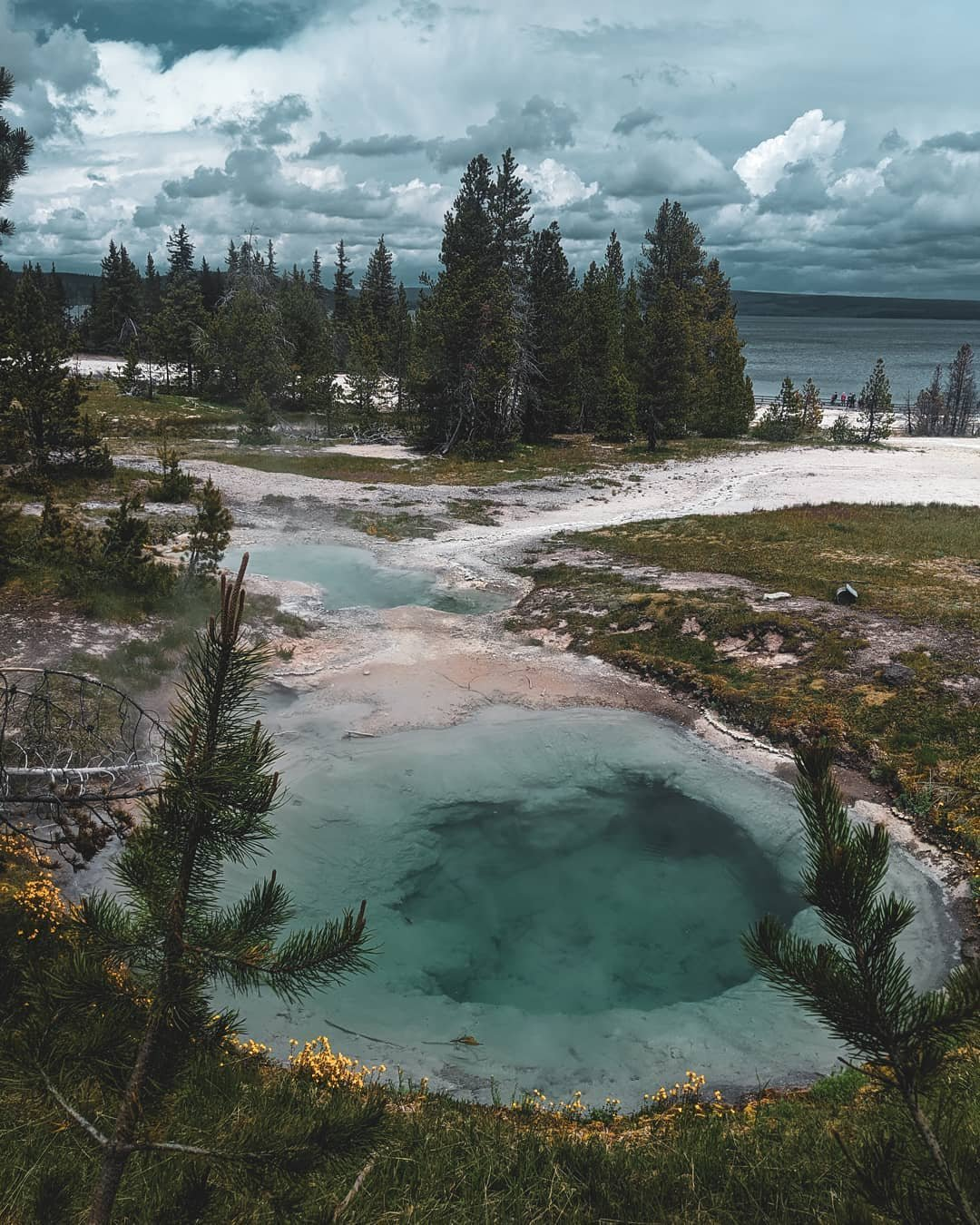 Photo by user jocandelar9, caption reads Life is everywhere , including in and around the most desolate and Maverick of places. . . . . . . #yellowstonenationalpark #nps #findyourpark #prismaticspring #nature #naturehub #optoutside #roadtrip #venture #photooftheday #photography #becurious #hikemore #worryless #backpacker #hiker #traveler #explore #yellowstone #greatoutdoors #besafe #beaware