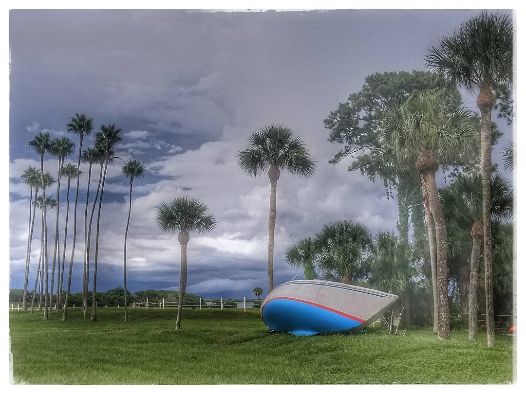 Sunday in Safety Harbor !  #safetyharbor #cleargram #vspc #lovefl #sundayfunday #boat #palmtrees #roamflorida #getoutside #livelocal #clouds #hashtagflorida #lovewhereilive #liveamplified