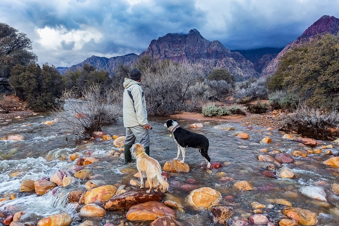 Out with the homies!  #redrockcanyonnationalconservationarea #redrockcanyon #river #explore #explorenevada #travel #hike #travelnevada #pets #getoutside #rocks #storm #lvphototours #pets #dogs #bordercollie #photographer #outdoorphotography #desert #mojavedesert #naturelovers