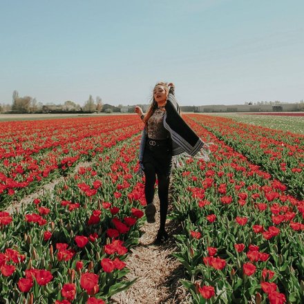 Tulip Garden Tours