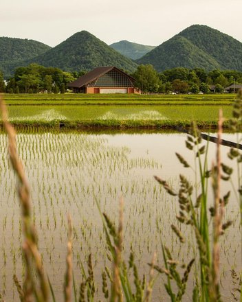 Summer In The Mountains In Japan Tours