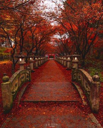 Japan By Season Tours