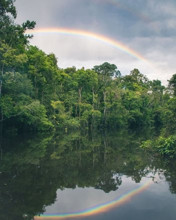 Amazon Rainforest Photography Tours