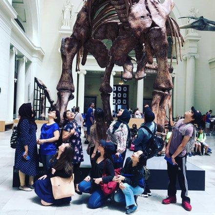 Maximo the Titanosaur | Field Museum