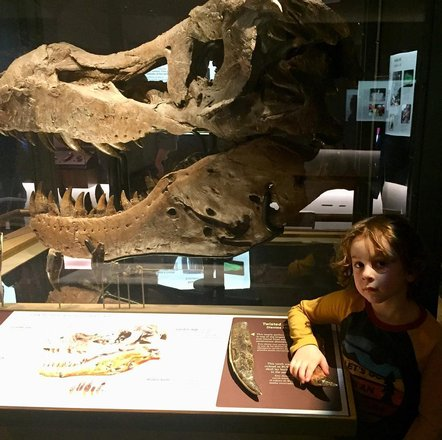 Evolving Planet | Field Museum