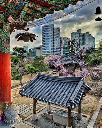 Seoul Tours