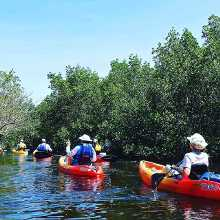 UP A CREEK WITH LOTS OF PADDLES!