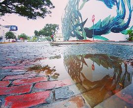 Puddles, murals and coffee ☔💕 🎨:@pantonio.o  #rebels_united #jj_community #jj_reflecting #jj_mobilephotography #jj_streetphotography #jj_florida #moodygrams #puddlegram #reflectiongram #roamflorida #explorida #shineonstpete #stpetestreetart #stpetemurals #vspc #liveamplified #cleargram #igersstpete