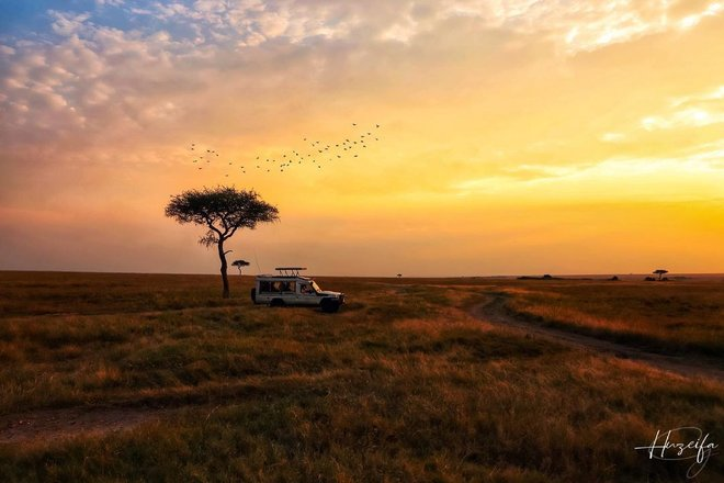 Masaai Mara Safari Tours