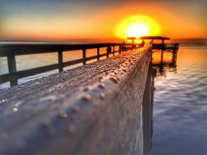 Safety Harbor #liveamplified#yesliveamplified