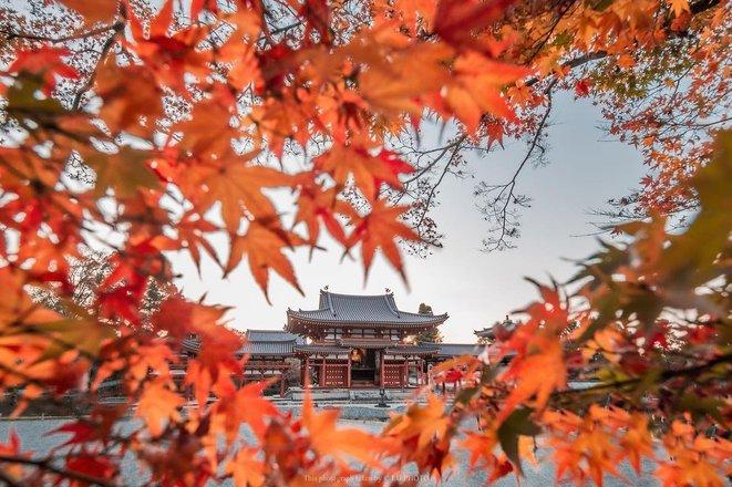 Autumn Colours in Japan Tours