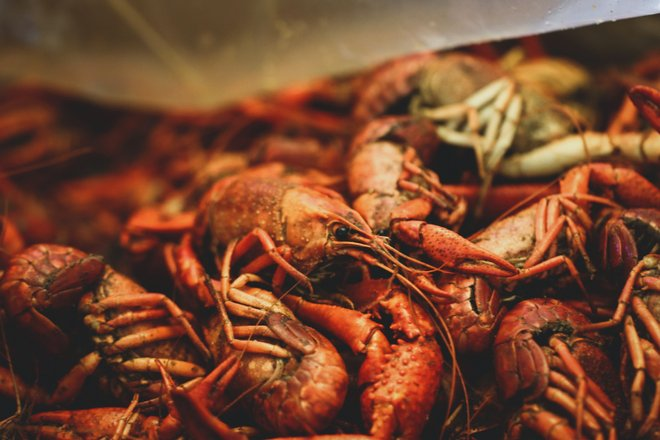 New Orleans Foodie Tours