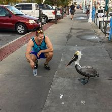 Made a new friend at the Clearwater Beach marina last weekend!