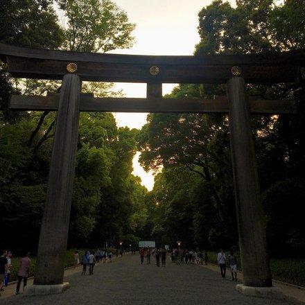 Meiji Jingu Shrine Tours