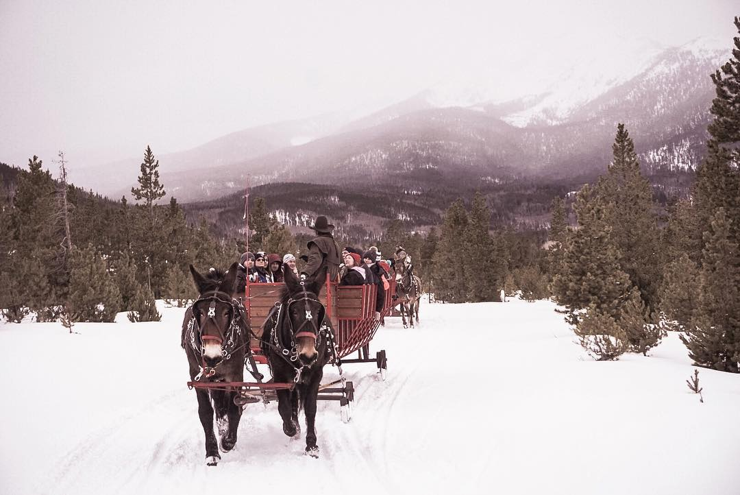 """When people ask if you have any hot plans for Valentine's Day and you get to honestly answer with... """"I'm going on a sleigh ride through the Rockies"""" 😍🐴🛷"""
