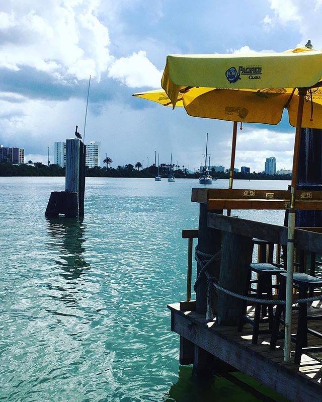 How would you like this lunch view? The beautiful waters of Clearwater, FL ☀️