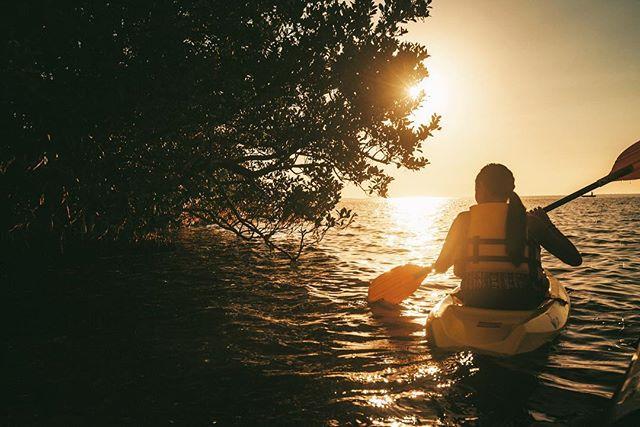There is no blue without yellow and without orange. -Vincent Van Gogh.  #kayaking #kayakflorida #daggerkayaks #gulfofmexico #lovefl #islandsofdunedin #coastalliving #pureflorida #roamflorida #igerstampa #dunedinfl #floridastateparks #caladesiisland #positiveoutlook #motivation