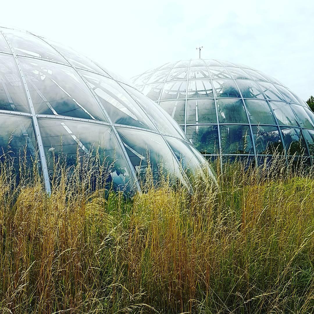 Alter Botanischer Garten Stadt Zürich: Alter Botanischer Garten - Galerie