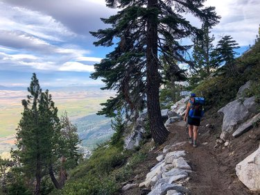 Tahoe Rim Trail Day 1: 6/27/20 Mile 80.7 - 84.8  •Flight Hartford to Dallas •Flight Dallas to Reno •1 hr Uber from Steve to Tahoe Sports LTD for fuel (isobutane and Mexican cantina) •Walked up Park St. past the CA  NA border to Van Sickle State Park and took the 3.2 mile Van Sickle Connector Trail up to mike 80.7 of the TRT •Headed south on the TRT to walk clockwise around the lake with an expected resupply in Tahoe City in 5-6 days •Took many pictures of the view of Carson Valley  •Set up camp early at mile 84.8 •Noticed headaches potentially from altitude change •Woke in the night to insane winds. Got up to save clothing drying on a line!   #trt2020 #tahoerimtrail #hikecalifornia #hikenevada #thruhiking #backpacking #adventure #withguthooks #teamzpacks