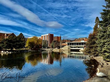 Exploring the University of Nevada Reno campus for the first time. Always something special about discovering a college campus.  . . . . . . . . #Reno #NevadaLife #RenoisRad #biggestlittlecity #travelnevada #sparksnv #renolens #renotahoe #ThisIsReno #Escape2Reno #RenoNevada #NorthernNevada #DiscoverNevada #NevadaNature #RenoPhotography #CityofReno #RenoLife #VisitReno #thisisreno #showmeyourcity #unr #unevedareno #collegelife #collegecampus #collegeready #landscapephotography #landscapes #showmeyourcity