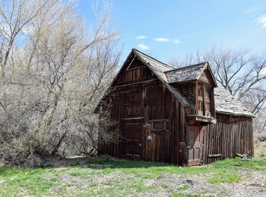 Paradise Valley came to life in 1864 after prospectors headed to the area in search of the Western dream: Gold. However, the dream here would soon turn to ranching. Now a living ghost town, the only services offered are a beautiful view and the Paradise Valley Saloon and Bar G . . . . . . #livingghosttown #paradisevalleynv #ranchtown #wildturkeyseverywhere #followthedirtroad #theroadlesstraveled #dfmi #nowherenv