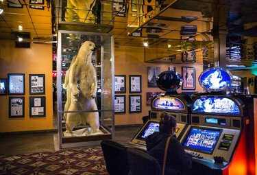 A 10-foot-tall taxidermied polar bear, dubbed White King, looms over gamblers at the Commercial Casino, which originally opened in 1869 as the Humboldt Lodging House in downtown Elko, Nev.  White King, who arrived at the casino in 1958 after being killed by Eskimos in Alaska, makes a momentary appearance in Hunter S. Thompson's 1992 essay