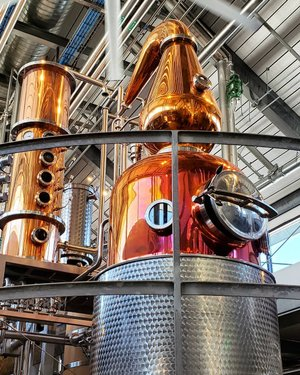Took a tour of bentlyheritagedistillery today. They have two Carl stills, just like ours at the Museum! Fun to see more Carls in Nevada. ❤ Awesome tour, awesome spirits! #bentlyheritage #bentlyheritageestatedistillery #carlstill #distillery #distillerytour #homemeansnevada #dfmi #battleborn #travelnevada #explorenevada #nevada #mindennv