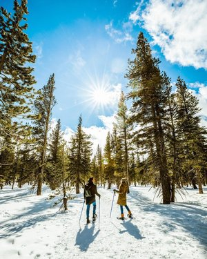 It's almost time for a snow day in Lake Tahoe. Who's coming snowshoeing with me this winter?