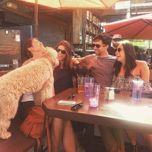 Puppies > Coachella
