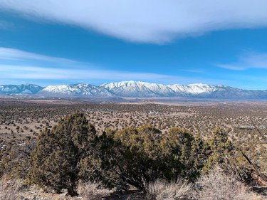 Fantastic Carson Valley views 🤩  • • •  Pinyon Trail is a moderate 5.3 mile loop located near Gardnerville, NV. The trail leads you up and around the mountain to get 360 views of the valley. Pinyon trail is great for mountain biking, ATV riding, horse back riding, and dog walking.   During this time of year there is still plenty of snow on the back side of the trail. About half of the trail is covered in mud. Not ideal, but doable. I am excited to return when the ground has dried up and the flowers start to bloom.   #pinyontrail #gardnervillenv #carsonvalleytrails #carsonvalley #pinyons #pinyontree #valleyview #360views #moderatehike #nevadatrails #nevadatravel #dogtrail #atvtrails #horsebackridingtrails #mountainbikingtrails #travelnevada