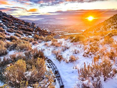 """There's a saying: """"you miss 100% of the sunrises you sleep through even though you set your alarm and you snooze your way through a whole hour you could have been up owning the morning.""""  Taking in all the winter #sunrise vibes this morning above Carson City #trailrunning. Didn't make great time cuz I kept stopping to check out this view of fire and ice 😍🔥❄️  #fireandice #wintertrails #carsoncity #ownthemorning"""