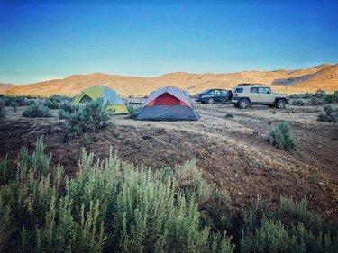 Camping with my brother in the Nevada desert. . . . #freecamping #roadtrips #openrange #desertvibes #nevadadesert #campsite #sunriseview #highdesert #dirtroads #corporaldipnstache