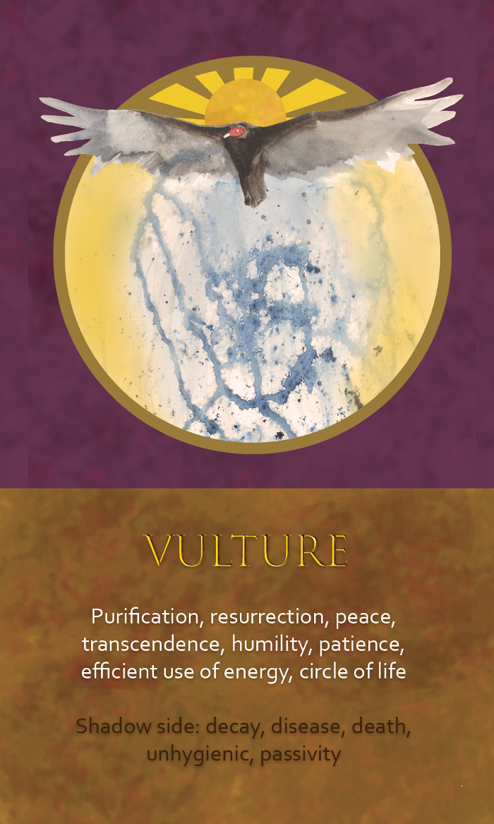 10-Spirit-Animal-oracle-card-Vulture.png