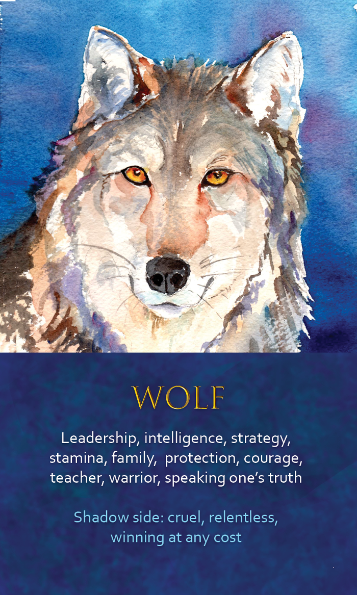 12-spirit-animal-oracle-card-wolf.png