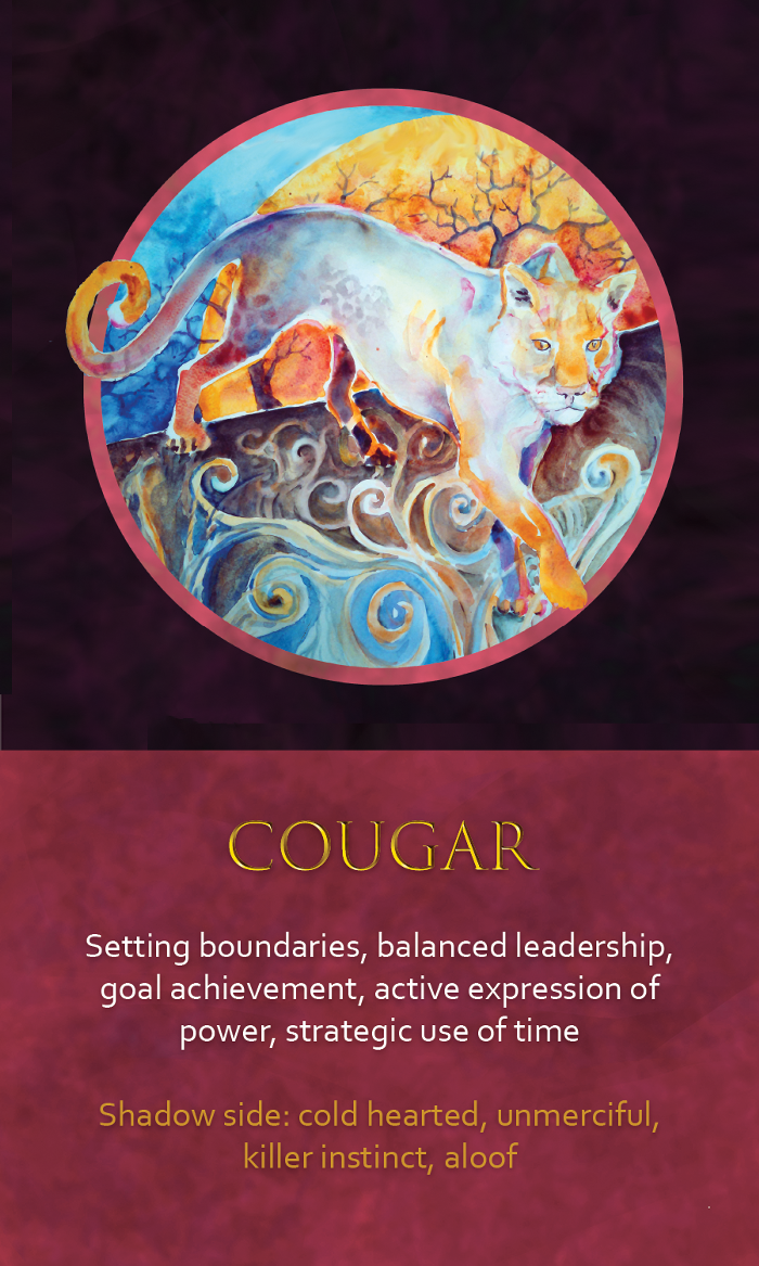 15-spirit-animal-oracle-card-cougar.png