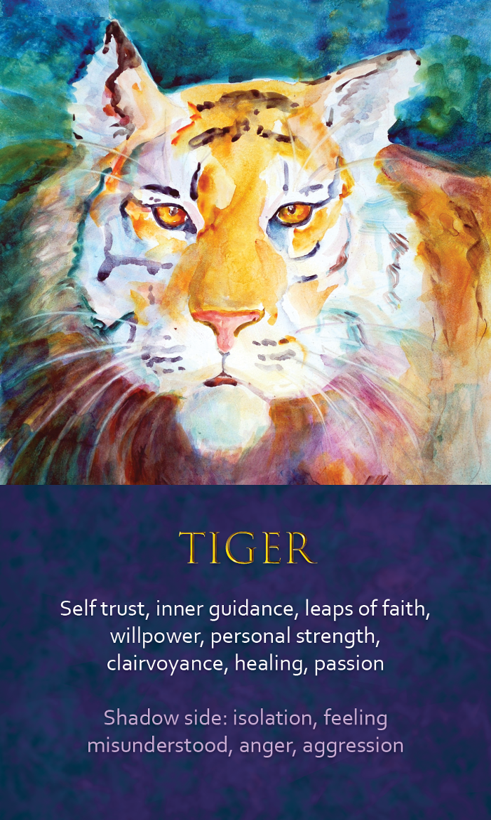 17-spirit-animal-oracle-card-tiger.png