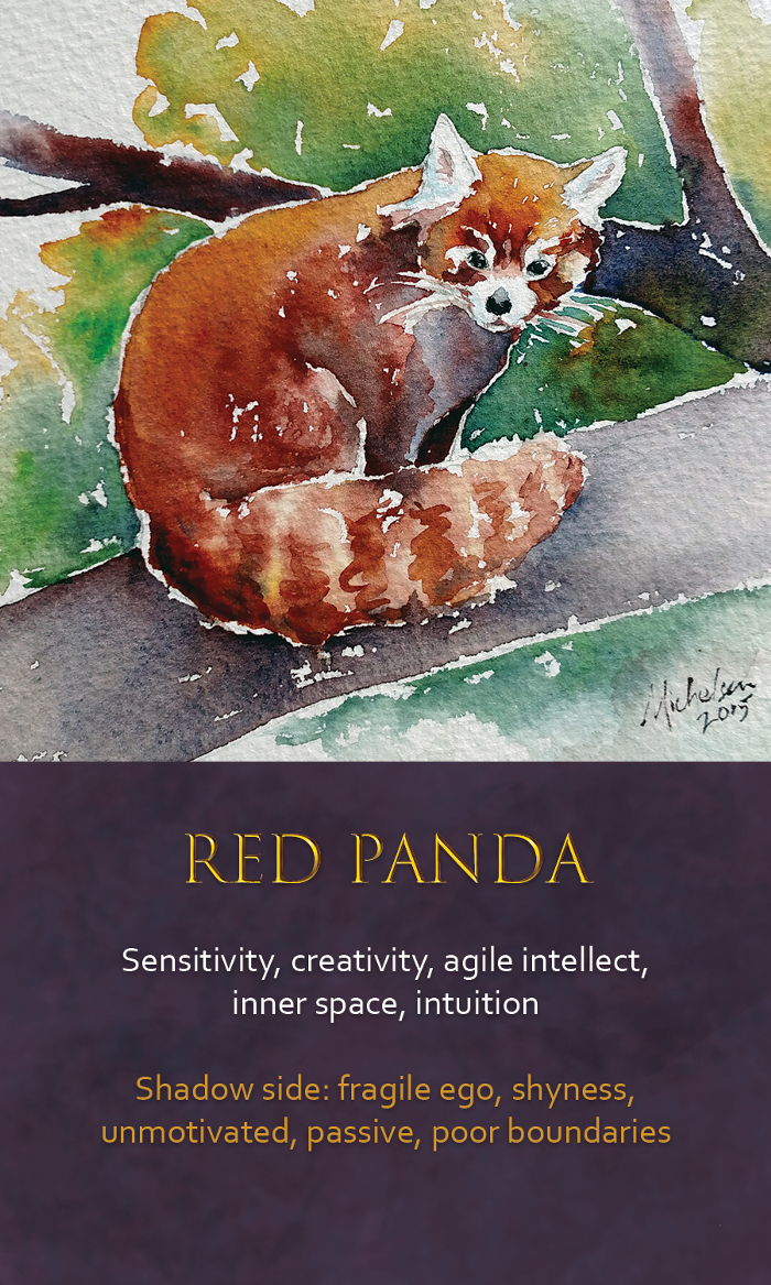 18-Spirit-animal-oracle-card-Red-Panda.png