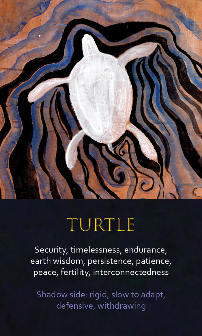 19-spirit-animal-oracle-card-turtle.png