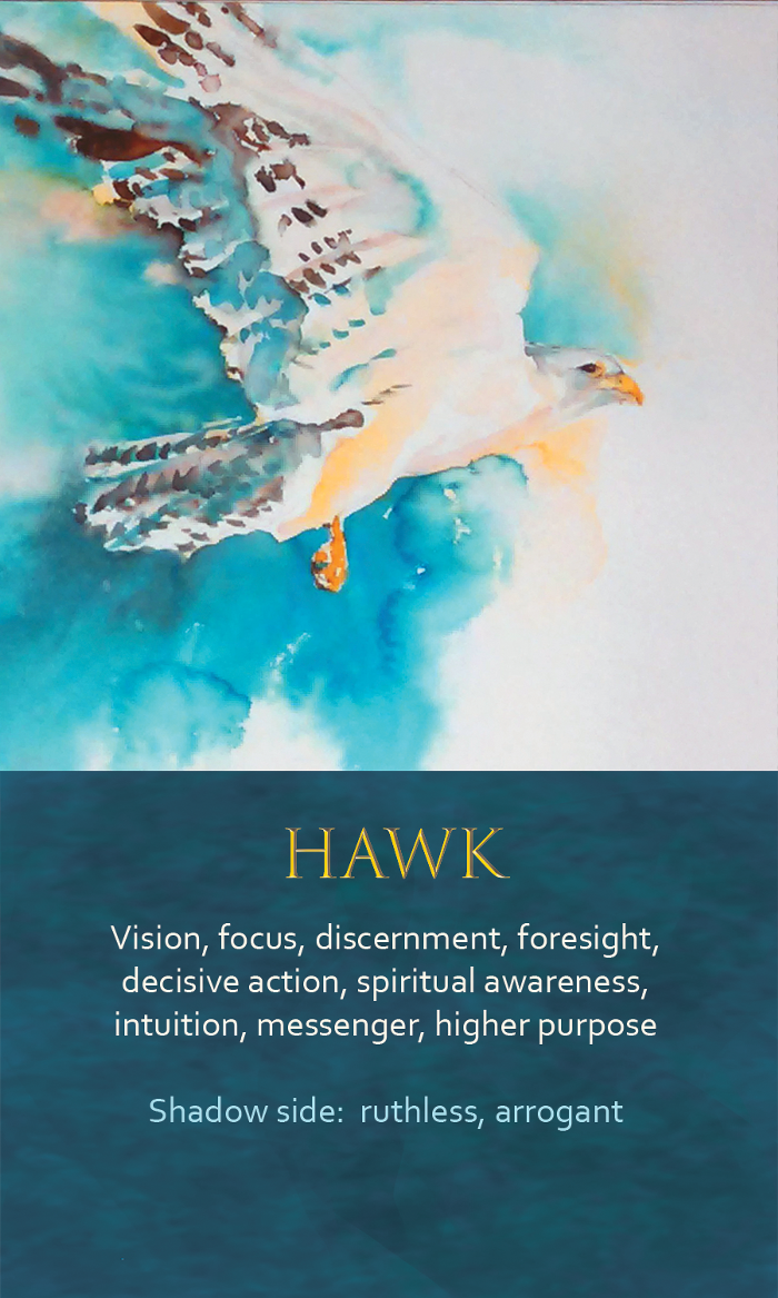 2-Spirit-Animal-Oracle-Card-Hawk.png