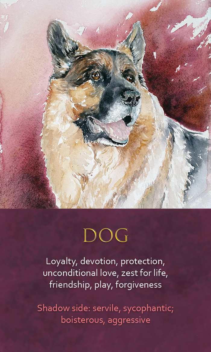 20-spirit-animal-oracle-card-Dog.png