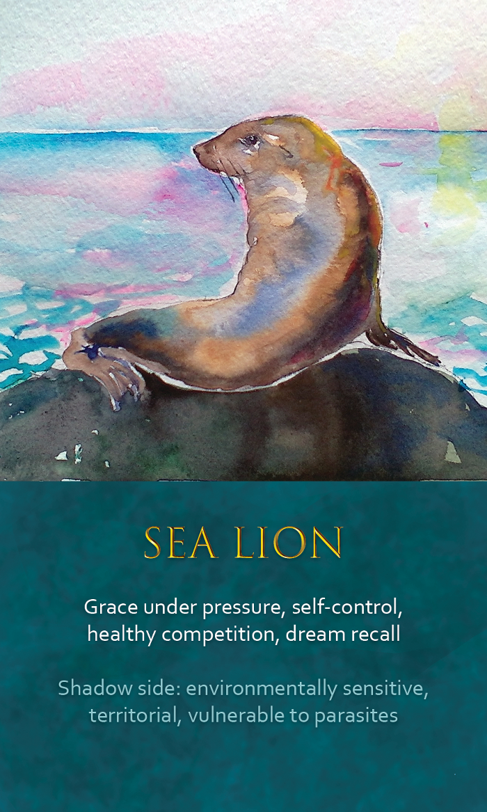 21-spirit-animal-oracle-card-Sea-Lion.png