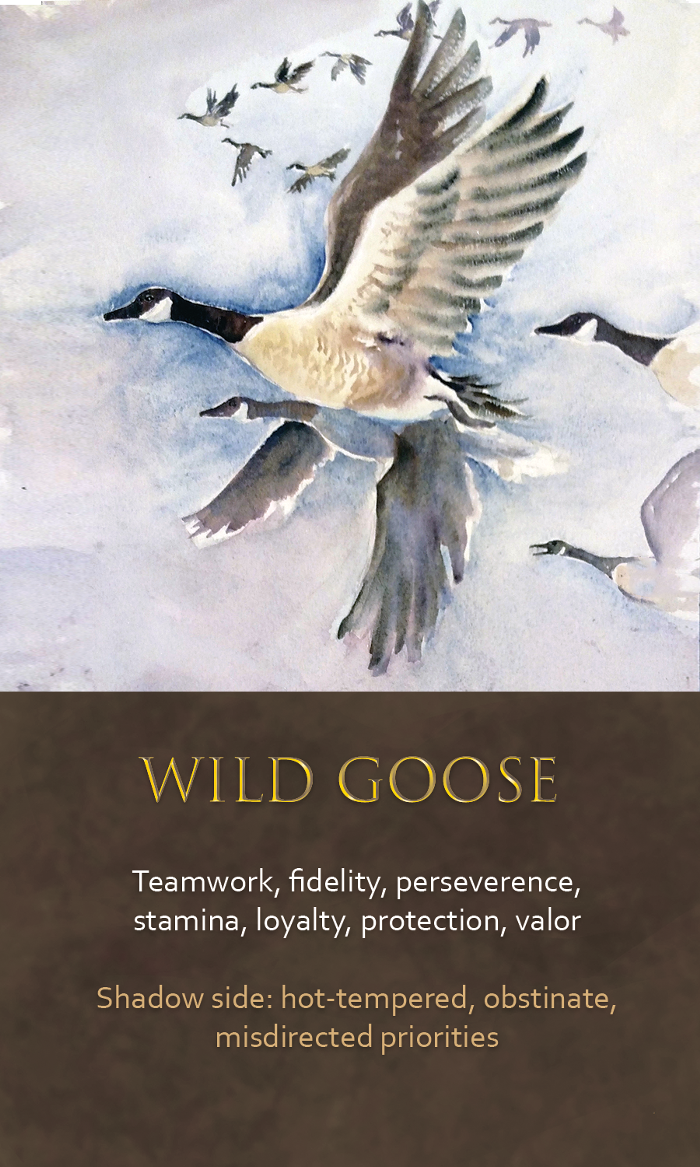 23-spirit-animal-oracle-card-Wild-goose.png