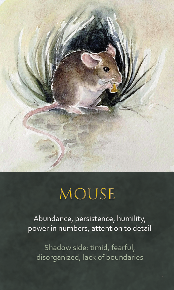 24-spirit-animal-oracle-card-Mouse.png