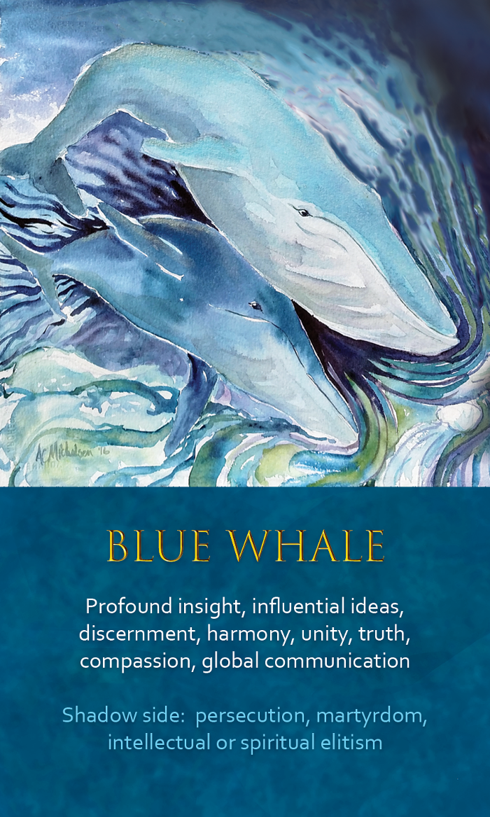 29-Spirit-Animal-Oracle-Card-Blue-Whale.png