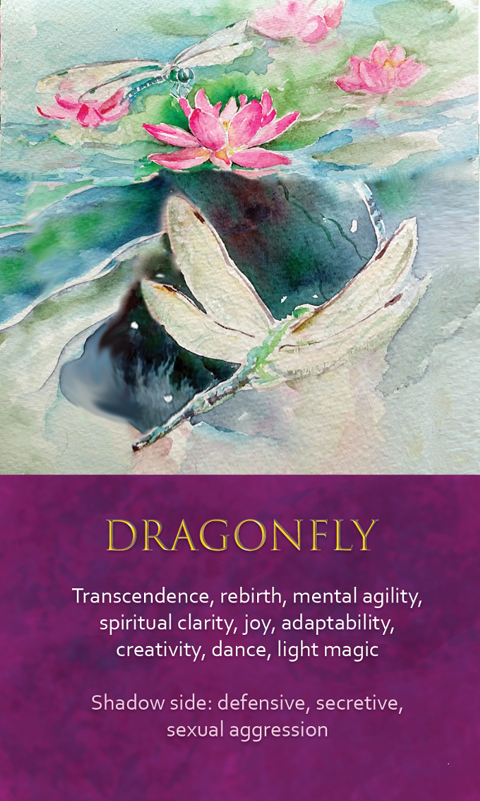 31-spirit-animal-oracle-card-Dragonfly.png