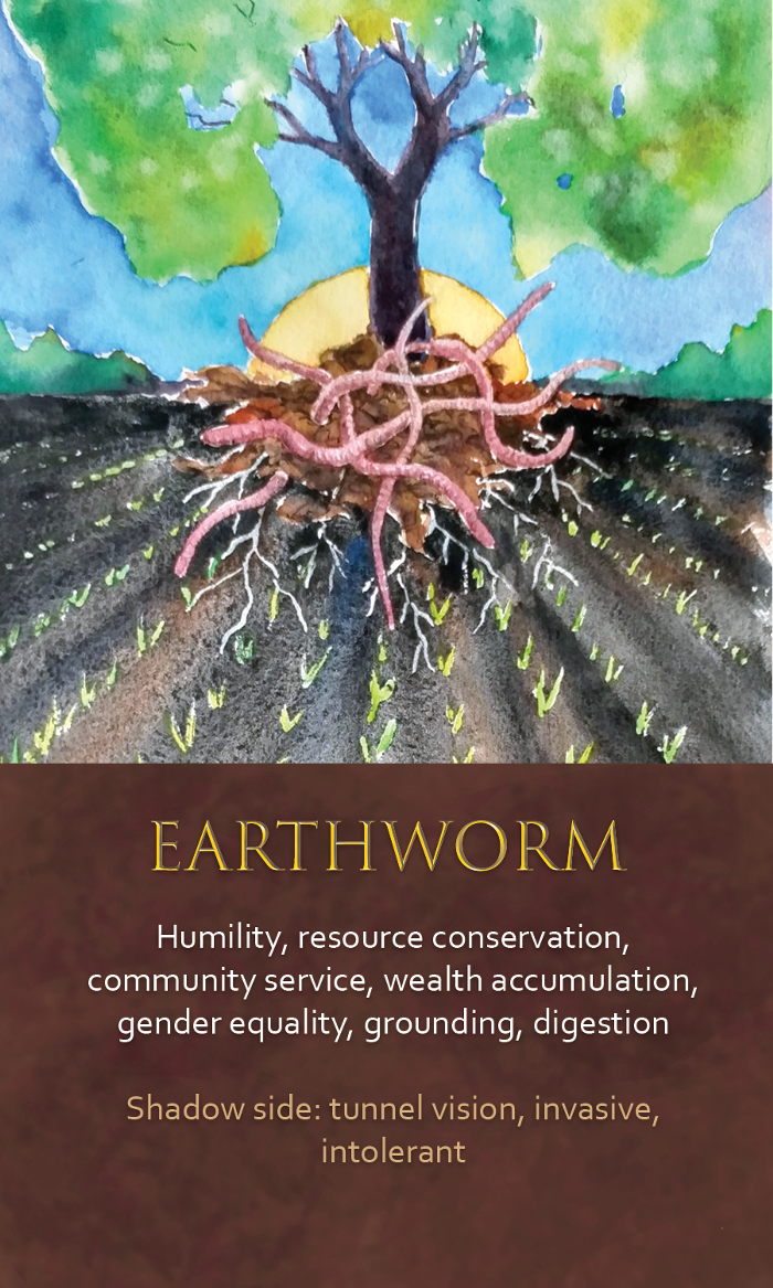 32-spirit-animal-oracle-card-Earthworm.png