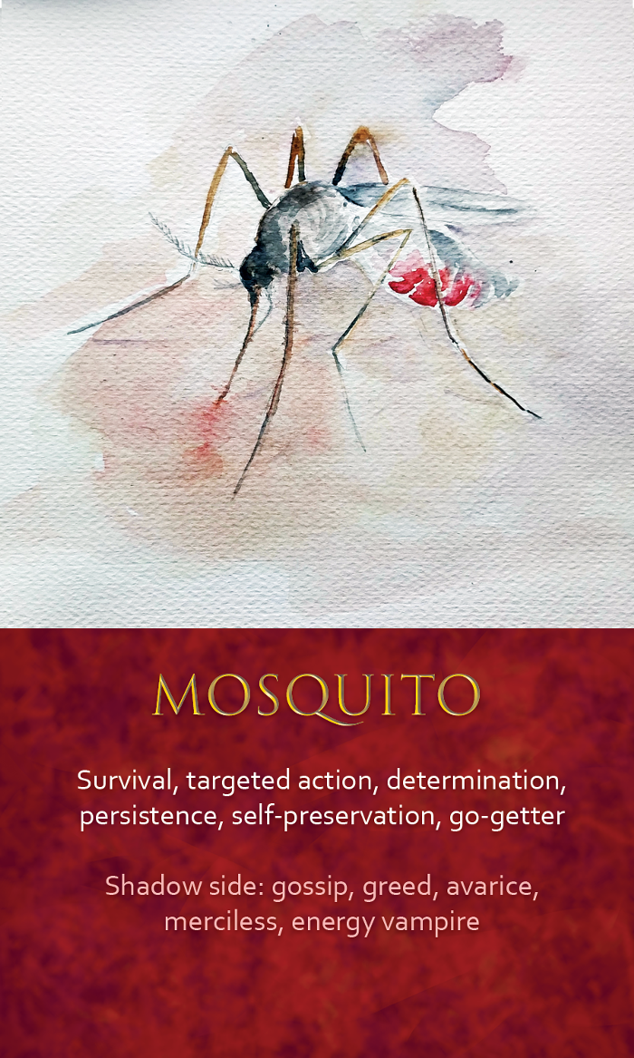 35-spirit-animal-oracle-card-Mosquito.png