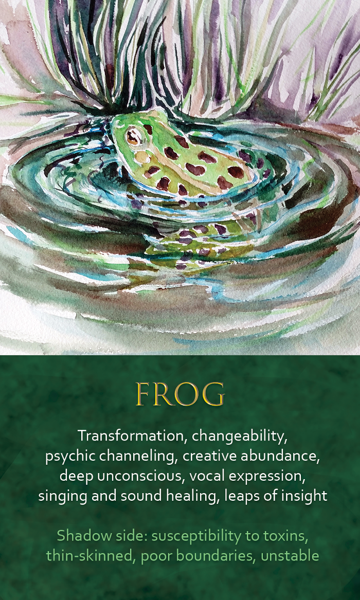 38-Spirit-Animal-oracle-card-Frog.png