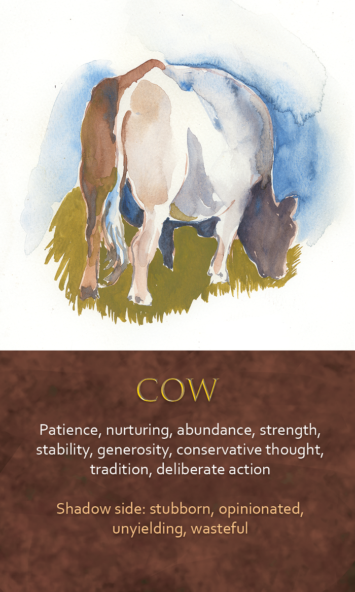 39-spirit-animal-oracle-card-Cow.png